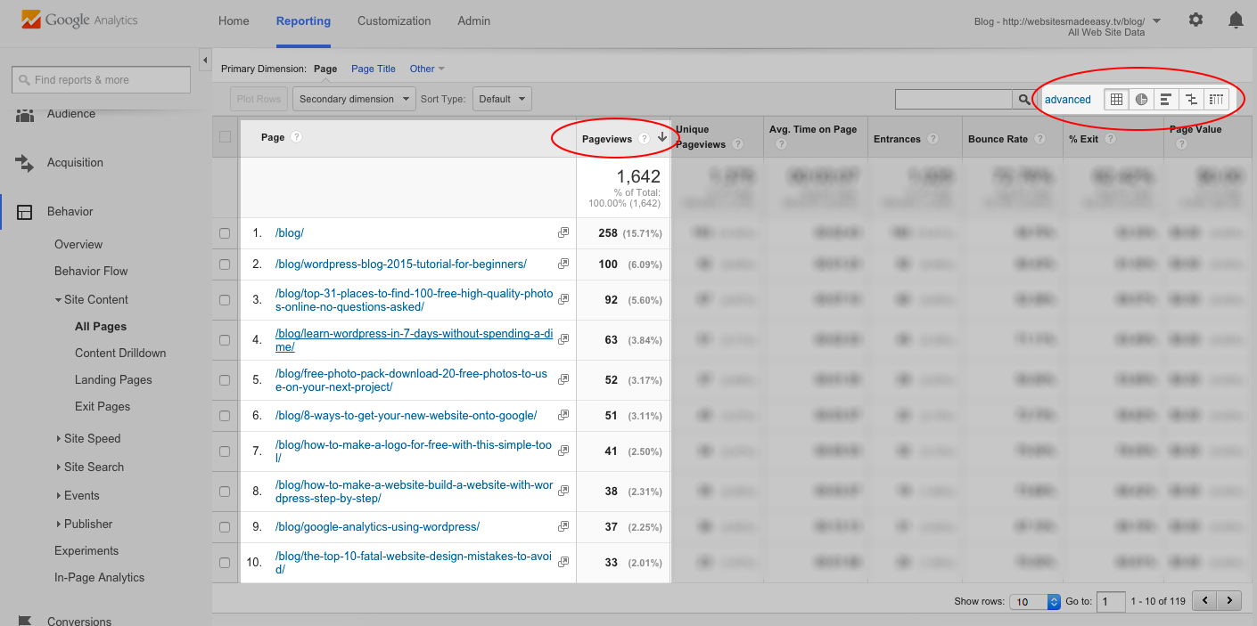 Google Analytics - Page Views2